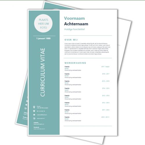 Voorbeeld Modern Curriculum Vitae Bq15 Belbin Info