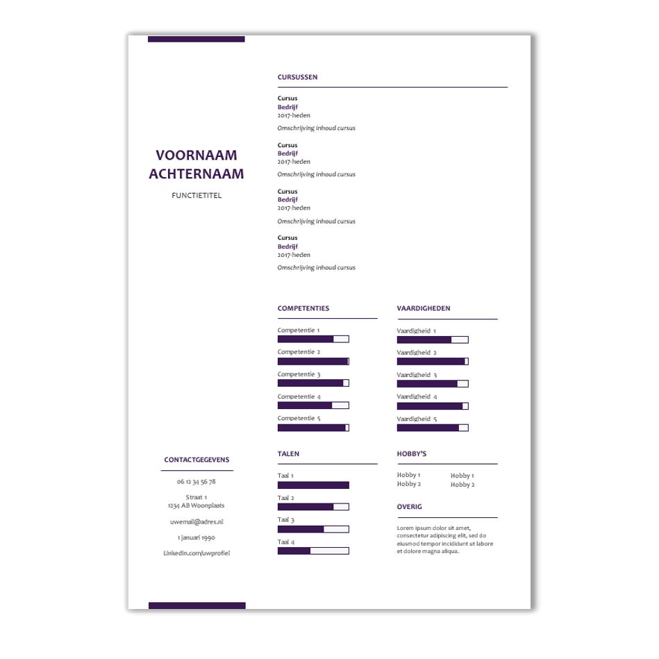 Download voorbeeld CV sjabloon 40 | CV voorbeelden.nl