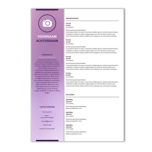 CV voorbeeld 90b